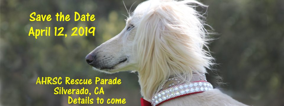 2019 Rescue Parade Add